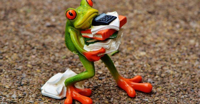 apa-saja-yang-harus-dipertimbangkan-sebelum-berbelanja-bahan-baku-secara-online-2