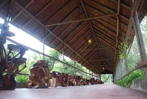 STOQO - Rindang Alam (foto: mudamudi.co.id)